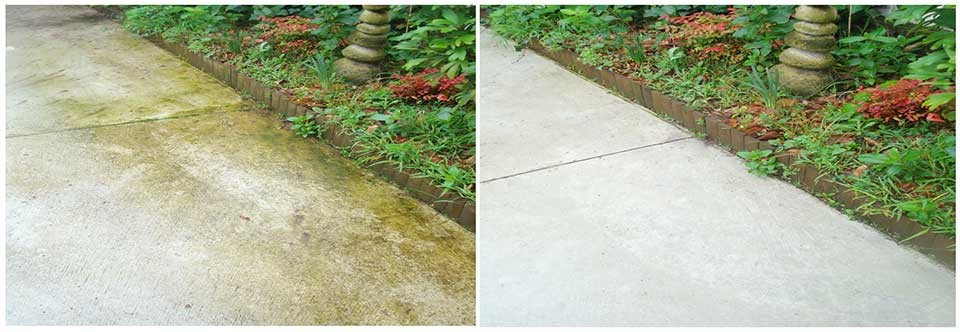 Algae infested and weather worn outdoor footpath thoroughly cleaned as seen in the before and after photo's